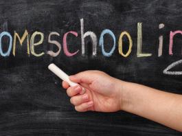 Hilbert Meyer - Homeschooling Fernunterricht
