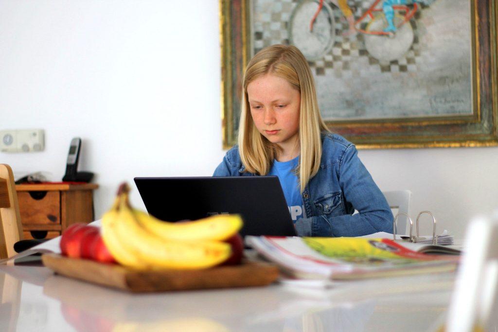 Hilbert Meyer: Didaktische Ansprüche an Homeschooling und Fernunterricht 2